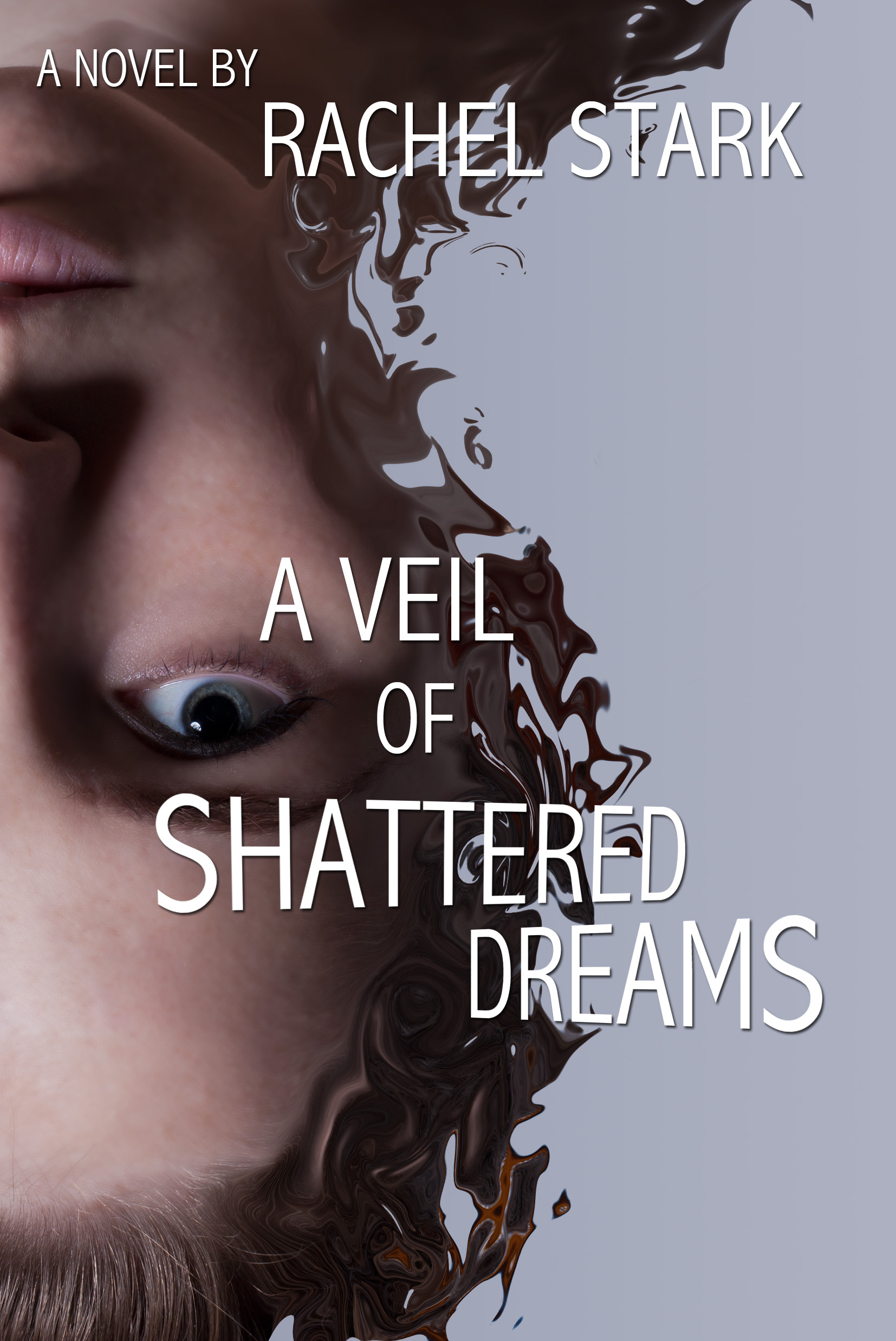book cover for A Veil of Shattered Dreams